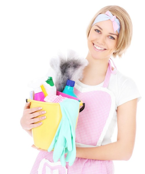 house cleaner - pink2